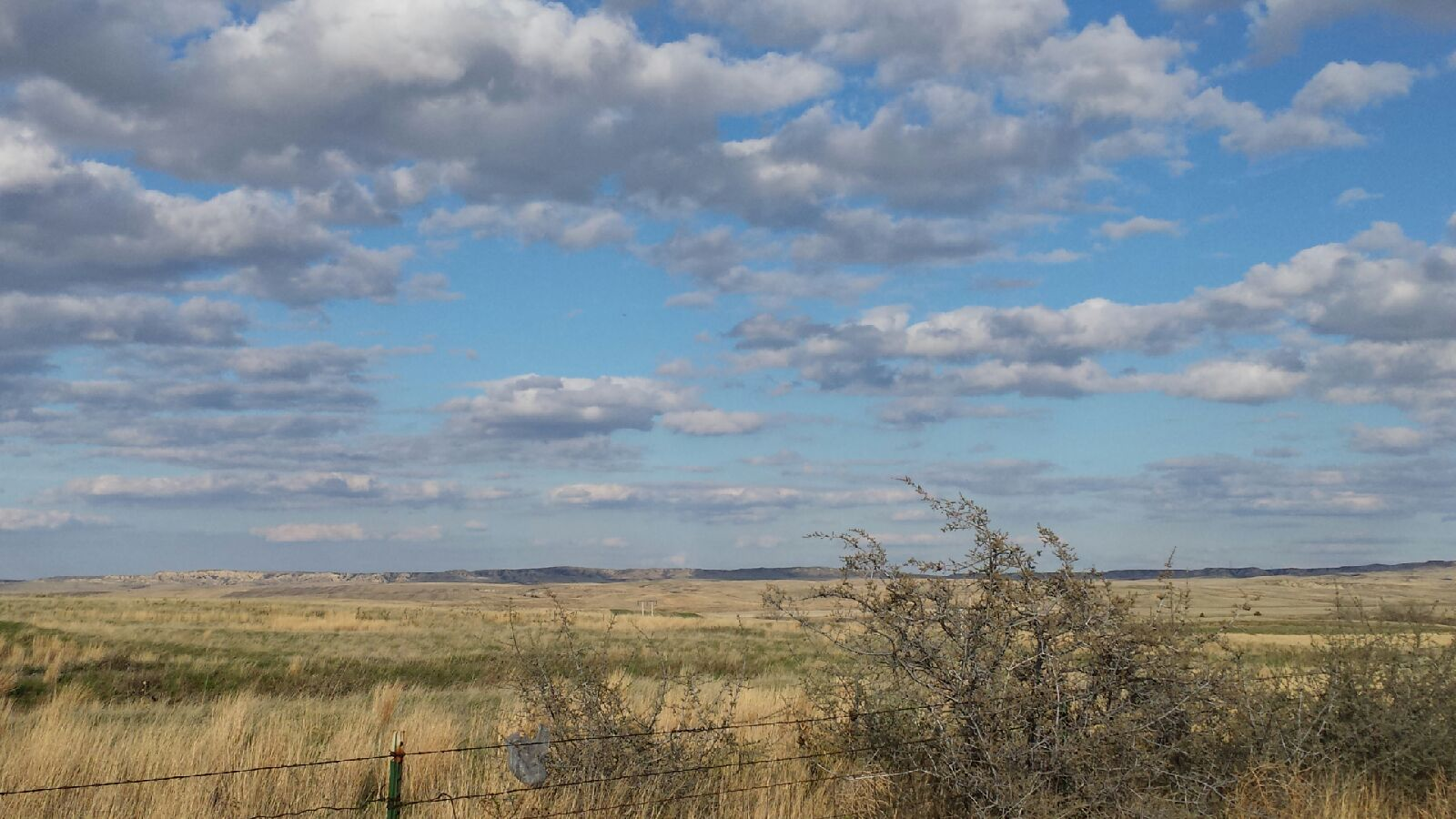 Montana mccone county circle - Welcome To Mccone County Conservation District